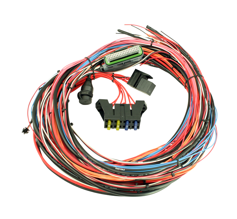 AEM EMS 4 Wiring Harness w/ Fuse & Relay Panel