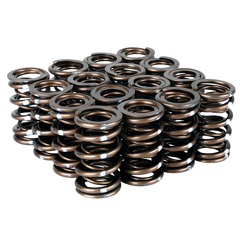 Skunk2 Pro Series XP Valve Springs