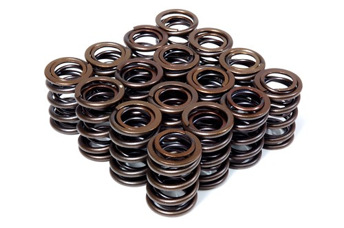 Blox Racing Valve Springs