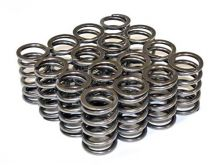 Supertech 02-05 Civic Si Single Valve Springs